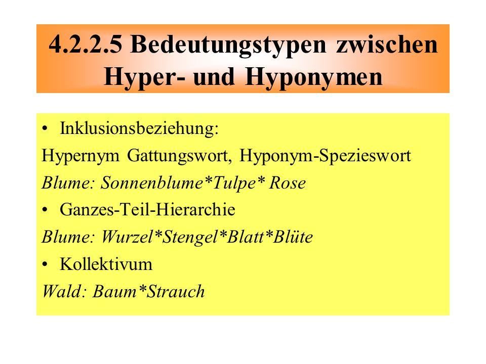 Inklusionsbeziehung: Hypernym Gattungswort, Hyponym-Spezieswort Blume: Sonnenblume*Tulpe* Rose Ganzes-Teil-Hierarchie Blume: Wurzel*Stengel*Blatt*Blüt