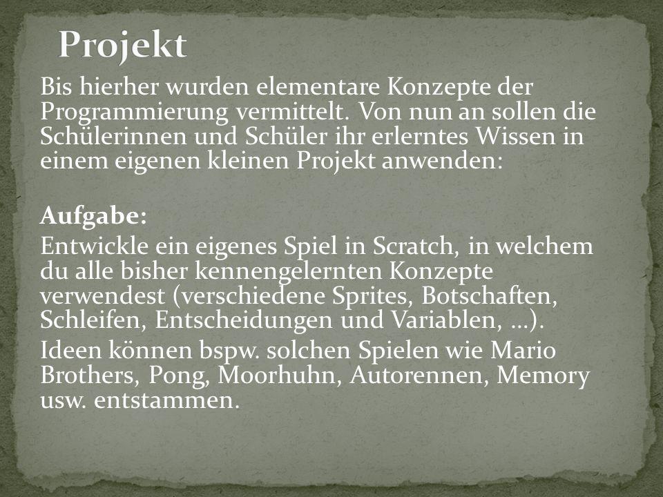 Bis hierher wurden elementare Konzepte der Programmierung vermittelt.