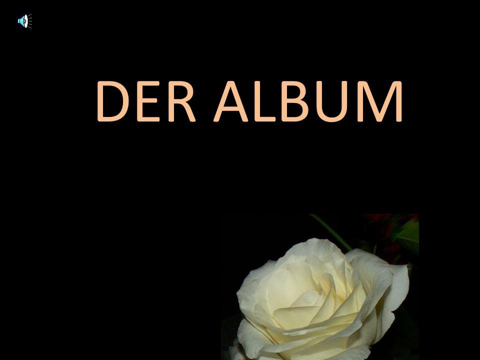 DER ALBUM