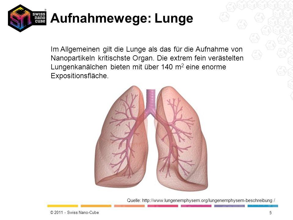 © 2011 - Swiss Nano-Cube Aufnahmewege: 4 Quelle: http://www.scherndl-figl.at/scherndl-figl-informiert/