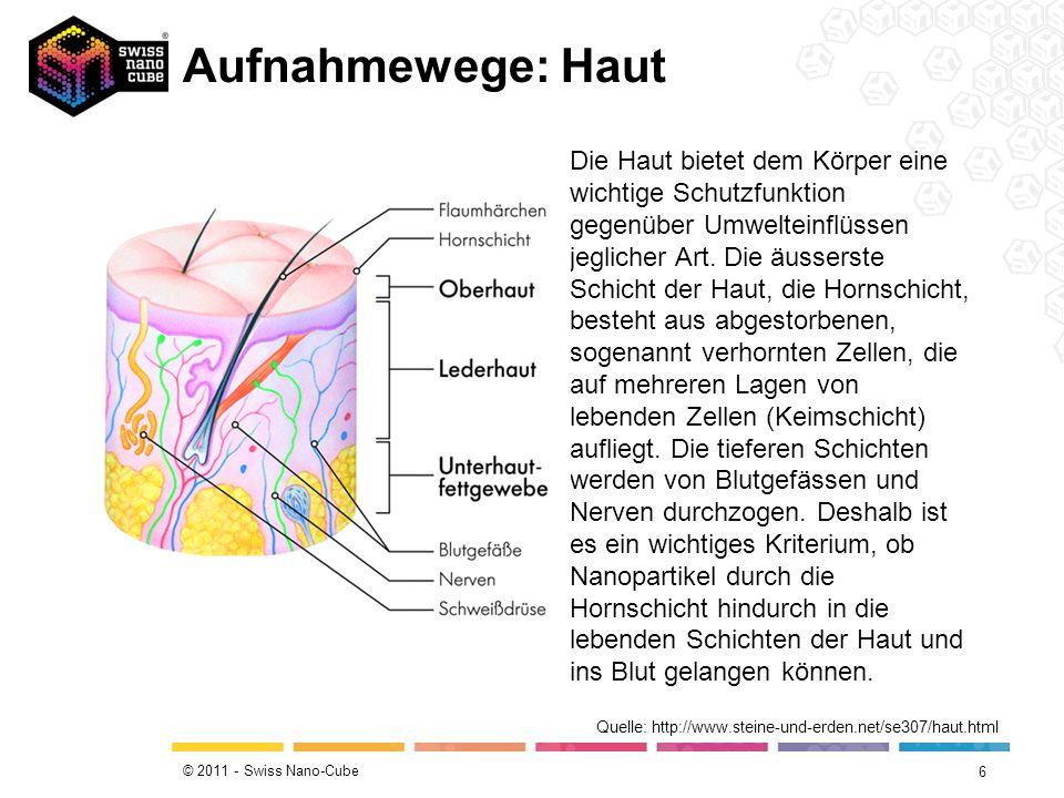 © 2011 - Swiss Nano-Cube Aufnahmewege: Haut 6 Quelle: http://www.steine-und-erden.net/se307/haut.html Die Haut bietet dem Körper eine wichtige Schutzfunktion gegenüber Umwelteinflüssen jeglicher Art.