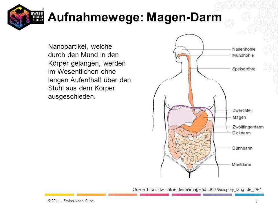 © 2011 - Swiss Nano-Cube Aufnahmewege: Magen-Darm 7 Quelle: http://idw-online.de/de/image?id=3602&display_lang=de_DE/ Nanopartikel, welche durch den Mund in den Körper gelangen, werden im Wesentlichen ohne langen Aufenthalt über den Stuhl aus dem Körper ausgeschieden.
