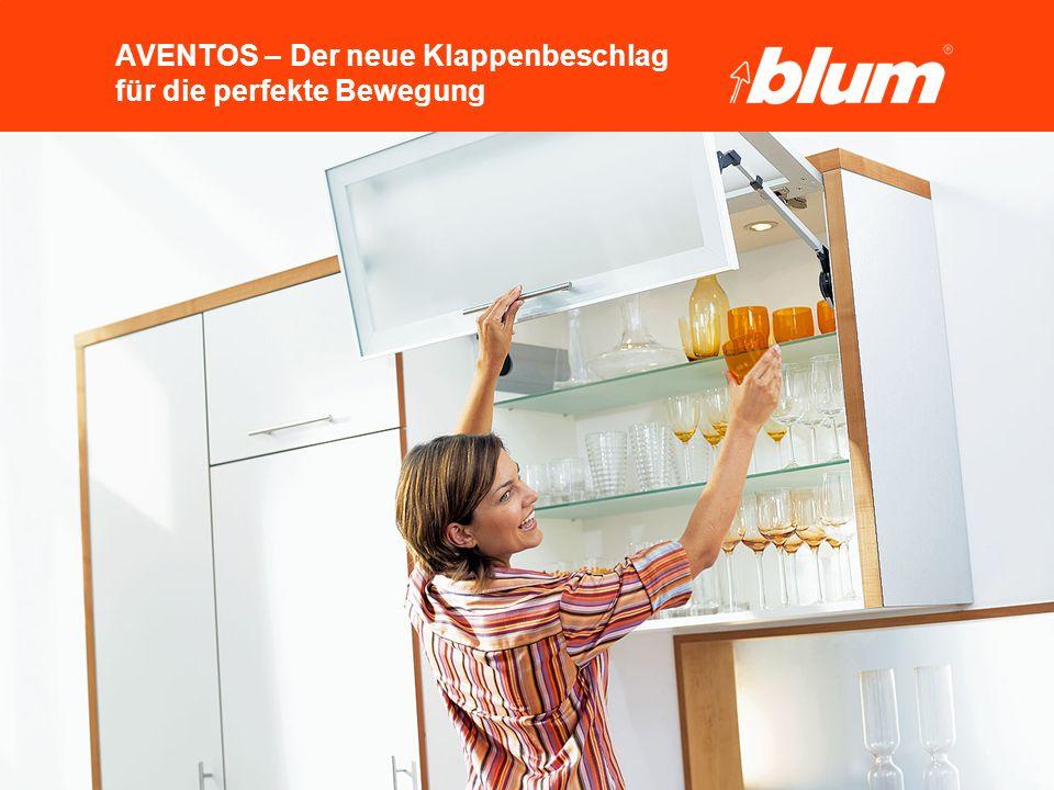 44 © Julius Blum GmbH AVENTOS HF Technische Details nFachböden -22 mm Rückschnitt -Flexible Positionierung der Fachböden –Je nach Höhe können 1 bis 2 Fachböden eingesetzt werden –Identische Stauraumfläche