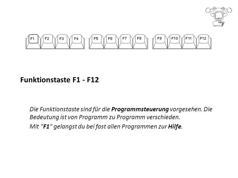 Funktionstaste F1 - F12 Die Funktionstaste sind für die Programmsteuerung vorgesehen.
