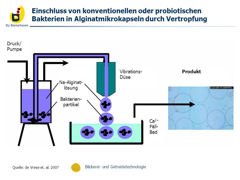 Bäckerei- und Getreidetechnologie Einschluss von konventionellen oder probiotischen Bakterien in Alginatmikrokapseln durch Vertropfung Produkt Ca 2+ F
