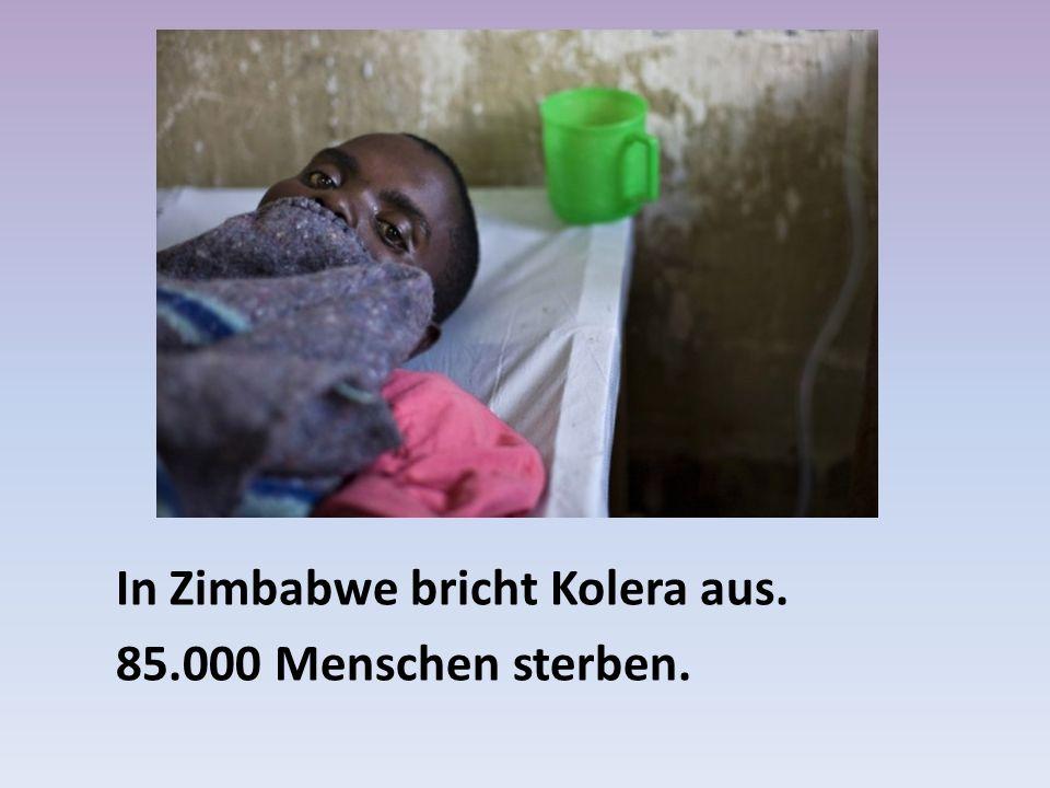 In Zimbabwe bricht Kolera aus. 85.000 Menschen sterben.