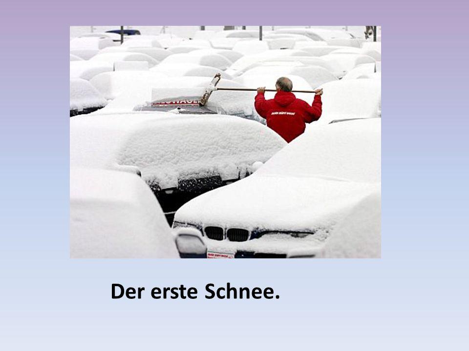 Der erste Schnee.