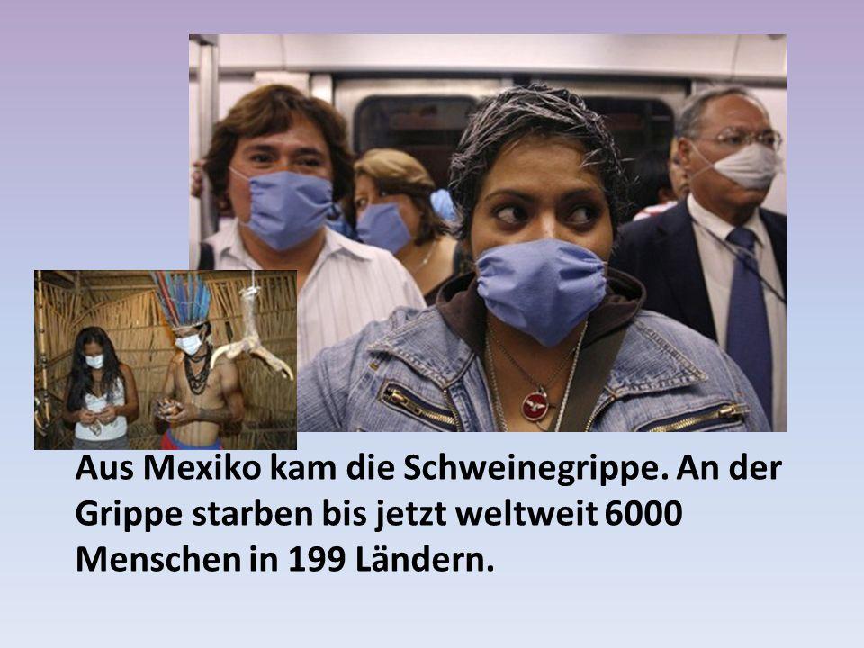Aus Mexiko kam die Schweinegrippe.