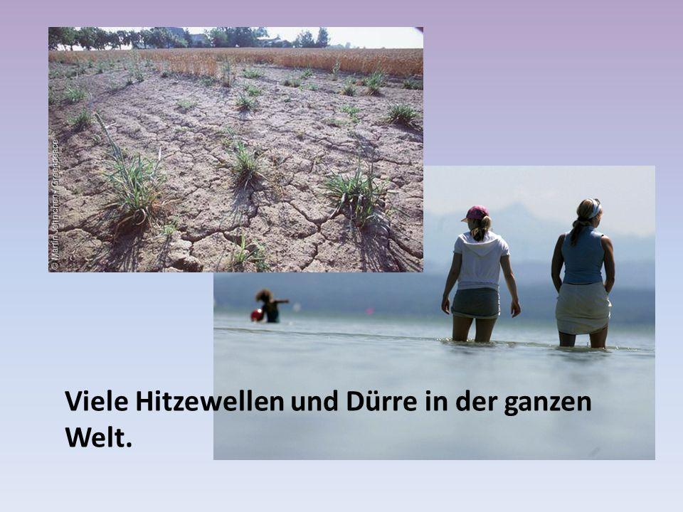 Viele Hitzewellen und Dürre in der ganzen Welt.