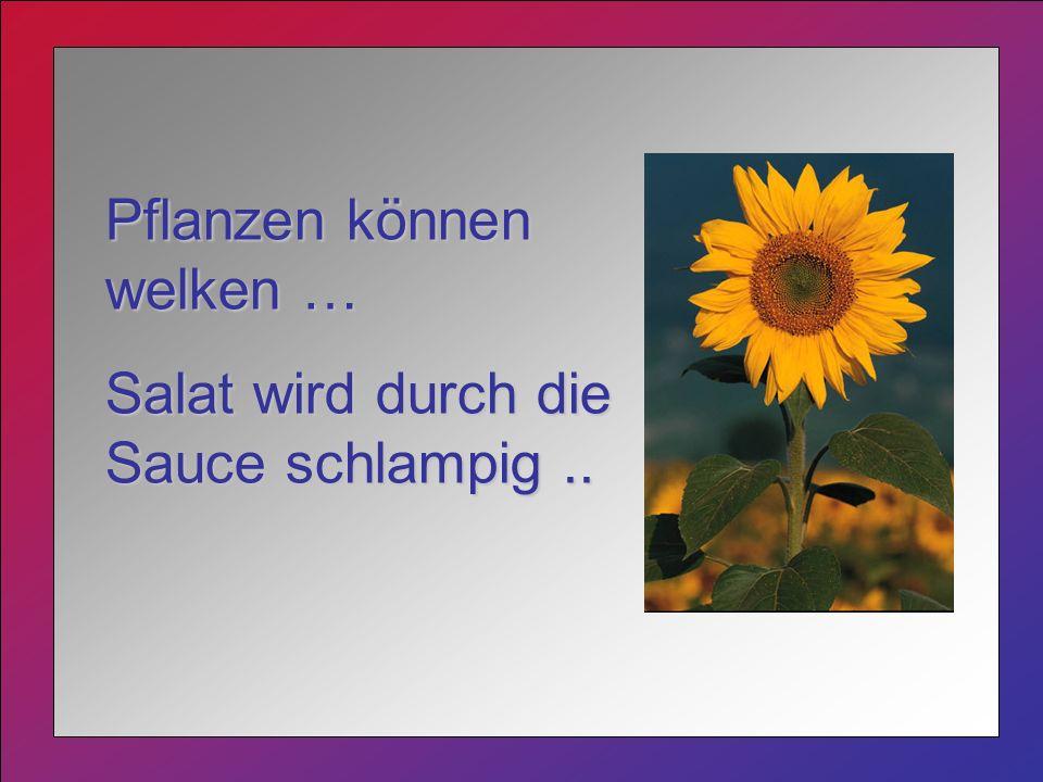 Pflanzen können welken … Salat wird durch die Sauce schlampig..