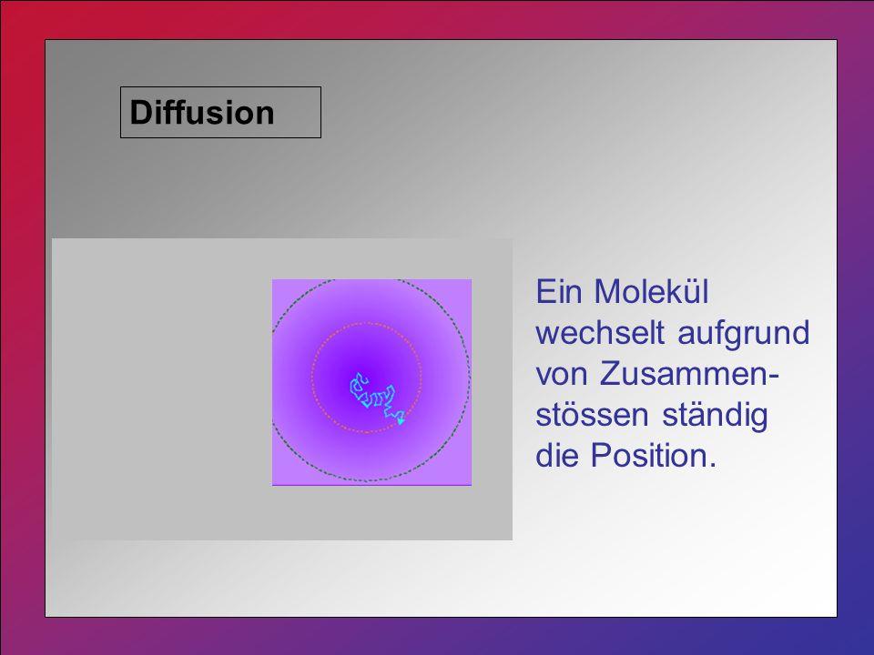 Diffusion Ein Molekül wechselt aufgrund von Zusammen- stössen ständig die Position.