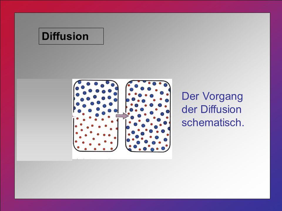 Diffusion Der Vorgang der Diffusion schematisch.