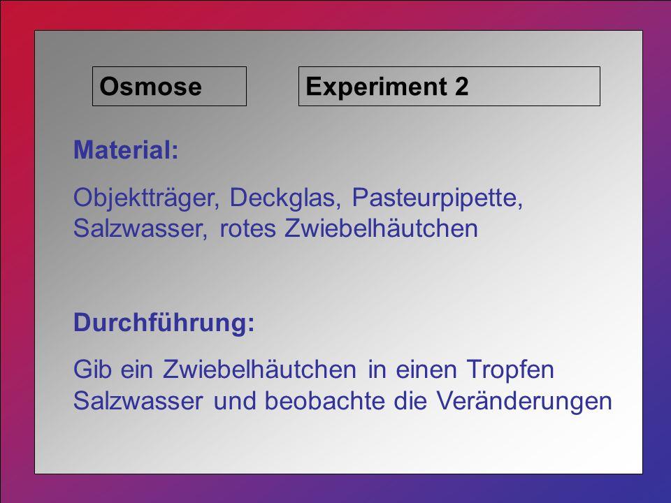 OsmoseExperiment 2 Material: Objektträger, Deckglas, Pasteurpipette, Salzwasser, rotes Zwiebelhäutchen Durchführung: Gib ein Zwiebelhäutchen in einen Tropfen Salzwasser und beobachte die Veränderungen