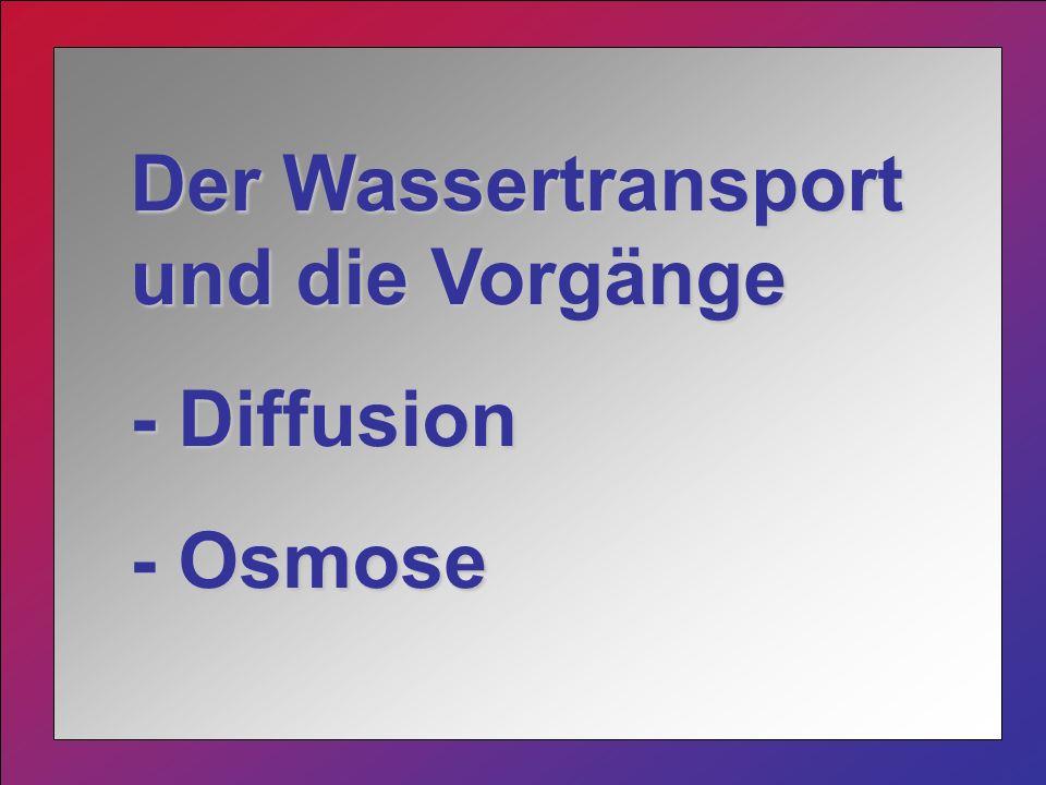 Der Wassertransport und die Vorgänge - Diffusion - Osmose