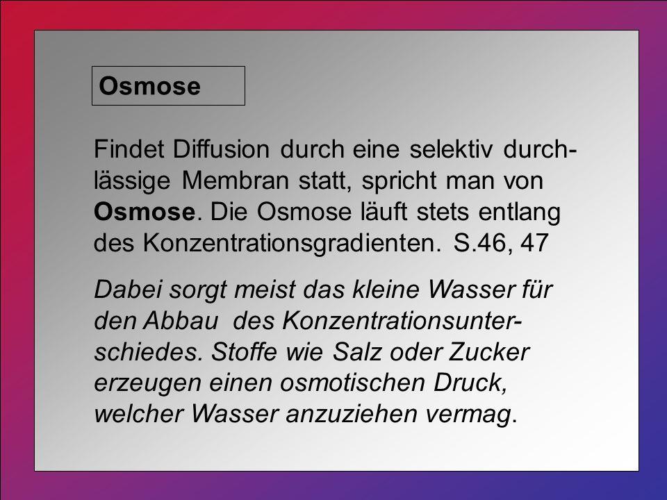 Osmose Findet Diffusion durch eine selektiv durch- lässige Membran statt, spricht man von Osmose.