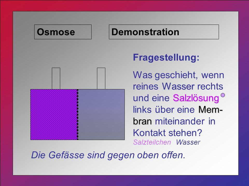 Osmose Fragestellung: Wasser Salzlösung Mem- bran Was geschieht, wenn reines Wasser rechts und eine Salzlösung links über eine Mem- bran miteinander in Kontakt stehen.