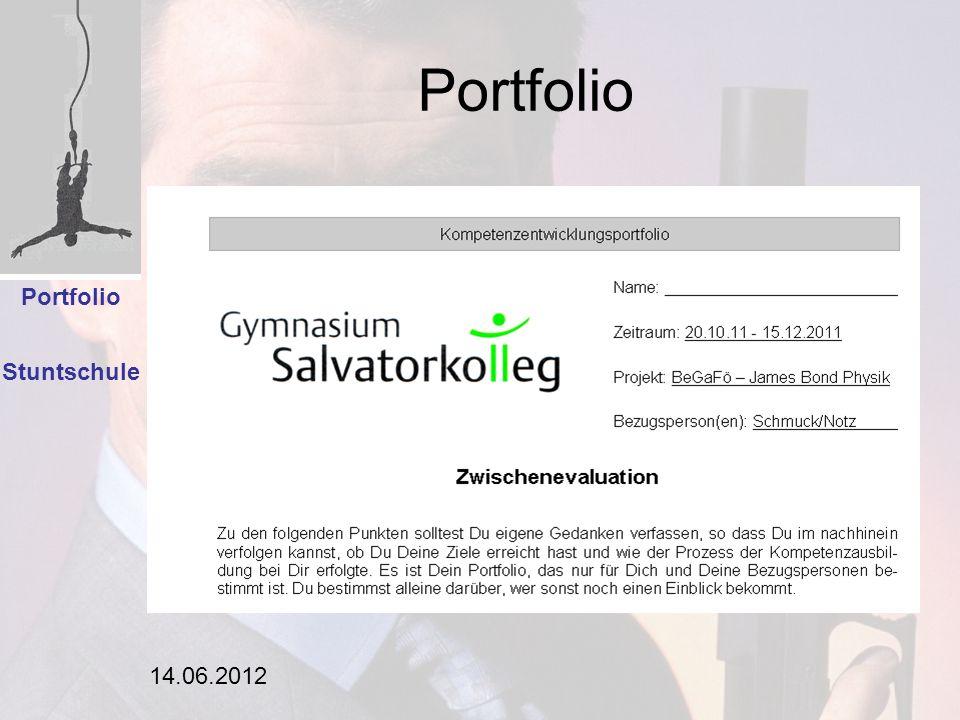 14.06.2012 Portfolio Stuntschule Analyse Portfolio Einleitung