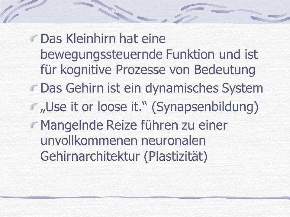 Das Kleinhirn hat eine bewegungssteuernde Funktion und ist für kognitive Prozesse von Bedeutung Das Gehirn ist ein dynamisches System Use it or loose it.