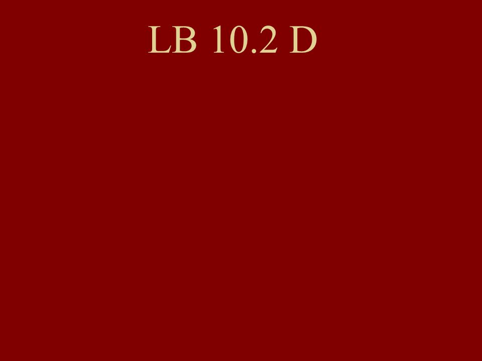 LB 10.2 D