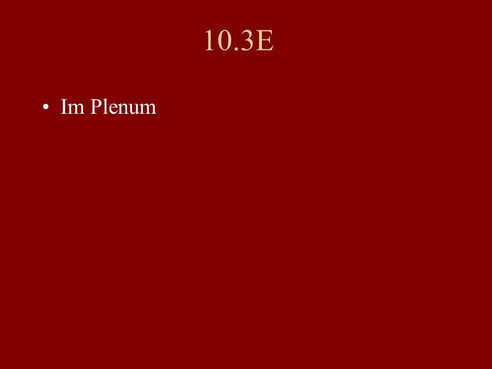 10.3E Im Plenum