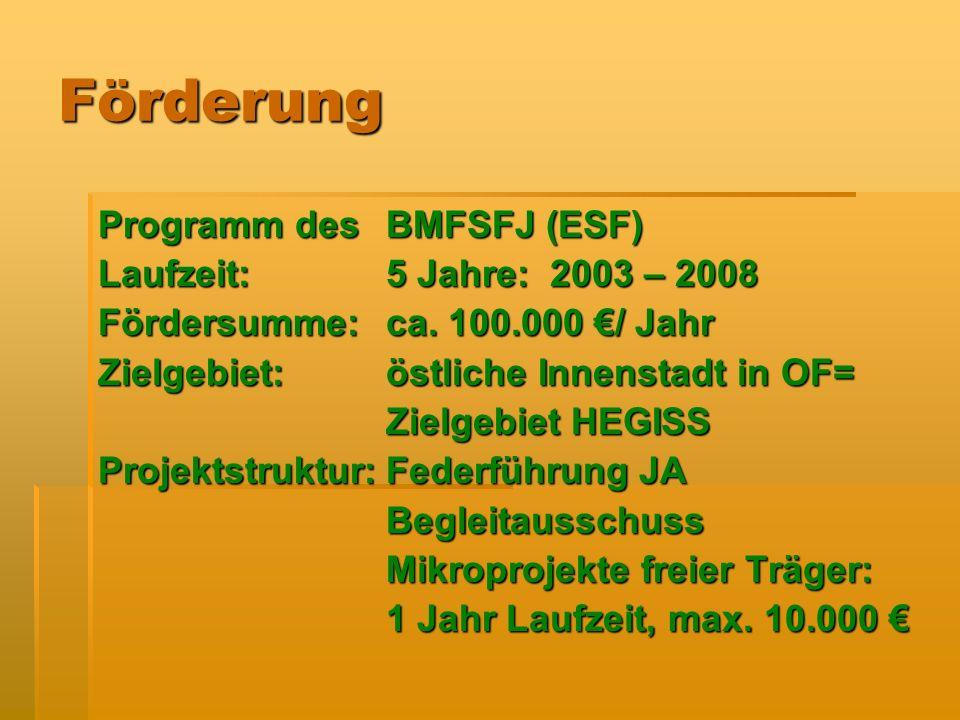 Förderung Programm des BMFSFJ (ESF) Laufzeit: 5 Jahre: 2003 – 2008 Fördersumme: ca.