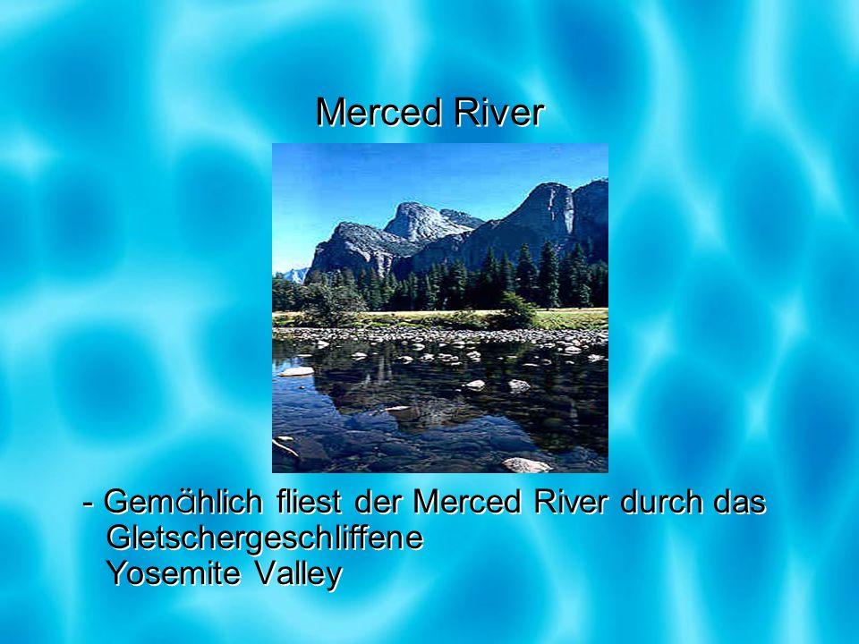 Merced River - Gem ä hlich fliest der Merced River durch das Gletschergeschliffene Yosemite Valley