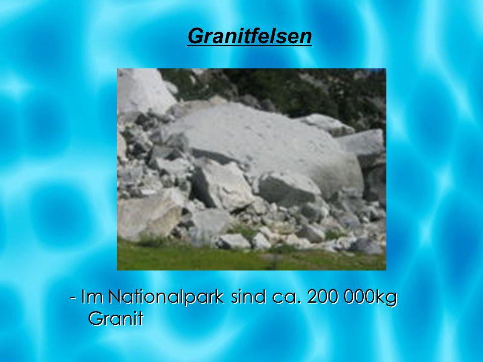 - Im Nationalpark sind ca. 200 000kg Granit Granitfelsen