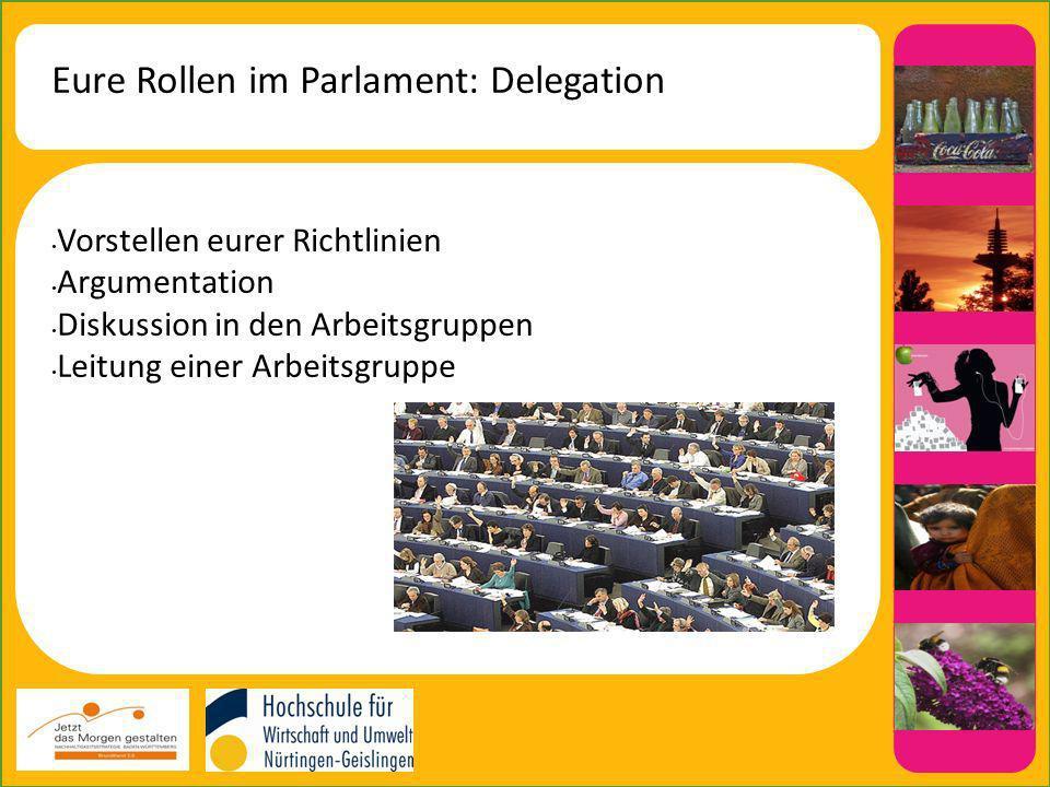 Eure Rollen im Parlament: Delegation Vorstellen eurer Richtlinien Argumentation Diskussion in den Arbeitsgruppen Leitung einer Arbeitsgruppe