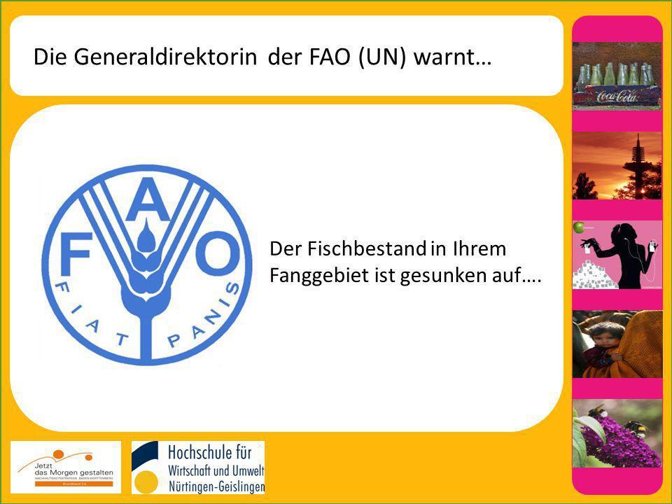 Die Generaldirektorin der FAO (UN) warnt… Der Fischbestand in Ihrem Fanggebiet ist gesunken auf….