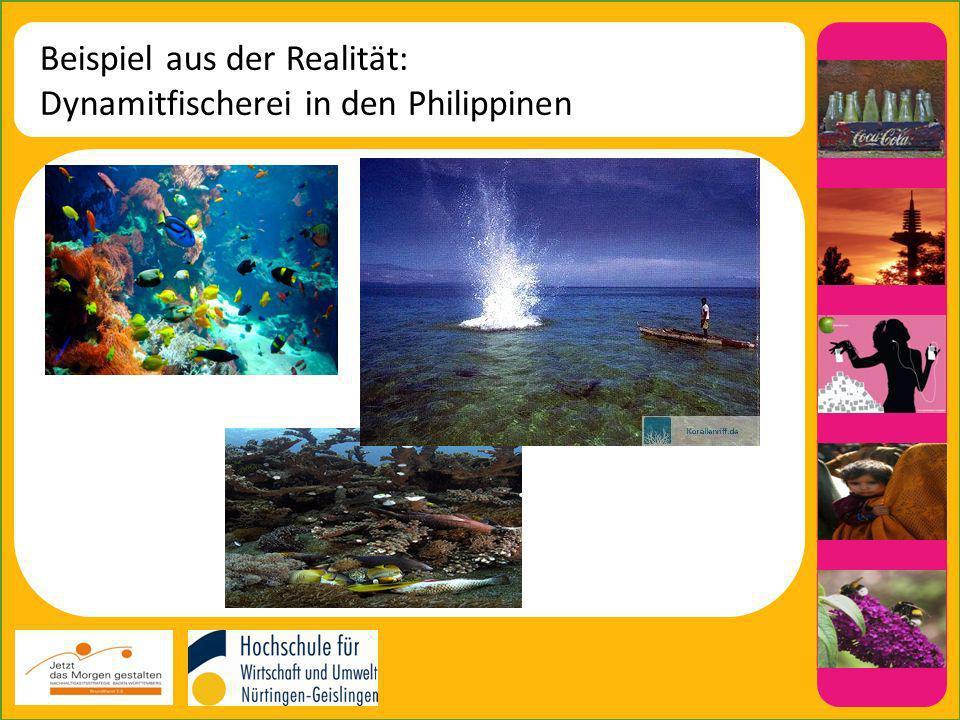 Beispiel aus der Realität: Dynamitfischerei in den Philippinen