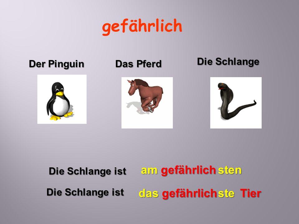 Der Pinguin Die Schlange Das Pferd gefährlich Die Schlange ist das gefährlich Tier ste Die Schlange ist am gefährlich sten