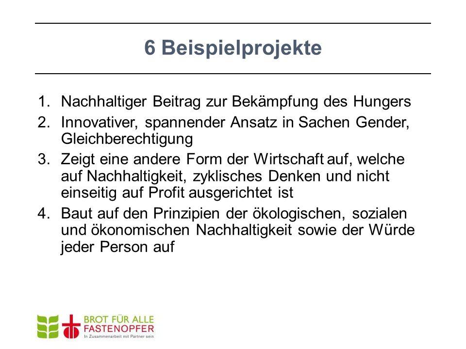 6 Beispielprojekte 1.Nachhaltiger Beitrag zur Bekämpfung des Hungers 2.Innovativer, spannender Ansatz in Sachen Gender, Gleichberechtigung 3.Zeigt ein