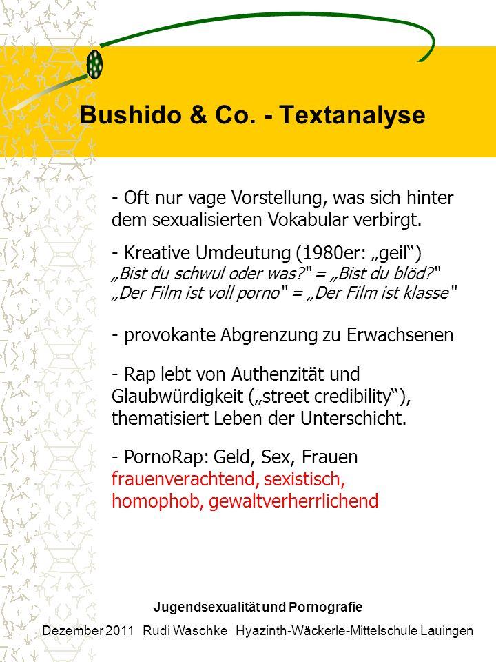 Bushido & Co. - Textanalyse Jugendsexualität und Pornografie Dezember 2011 Rudi Waschke Hyazinth-Wäckerle-Mittelschule Lauingen - Oft nur vage Vorstel