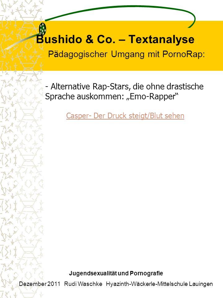 Bushido & Co. – Textanalyse P ä dagogischer Umgang mit PornoRap: Jugendsexualität und Pornografie Dezember 2011 Rudi Waschke Hyazinth-Wäckerle-Mittels