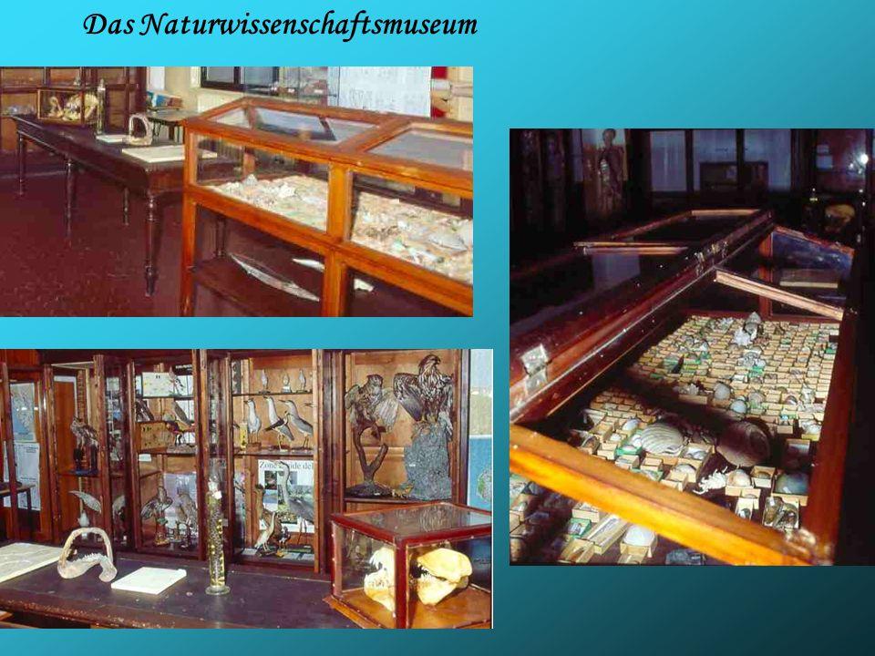 Das Naturwissenschaftsmuseum