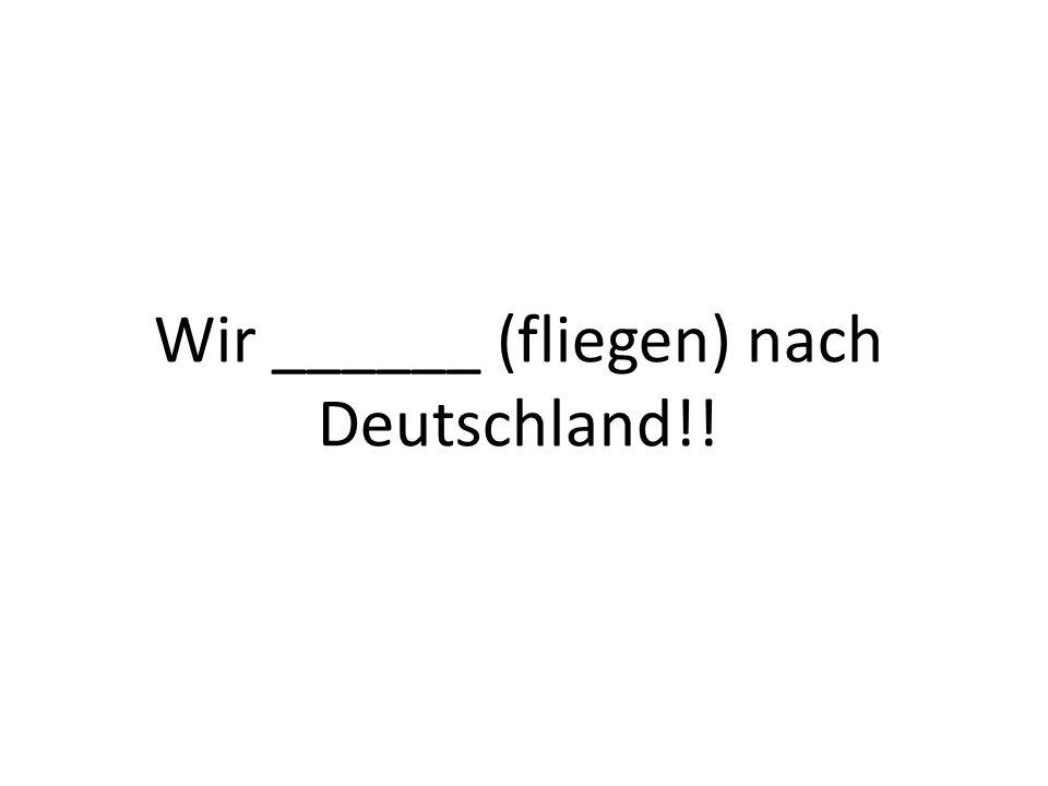 Wir ______ (fliegen) nach Deutschland!!