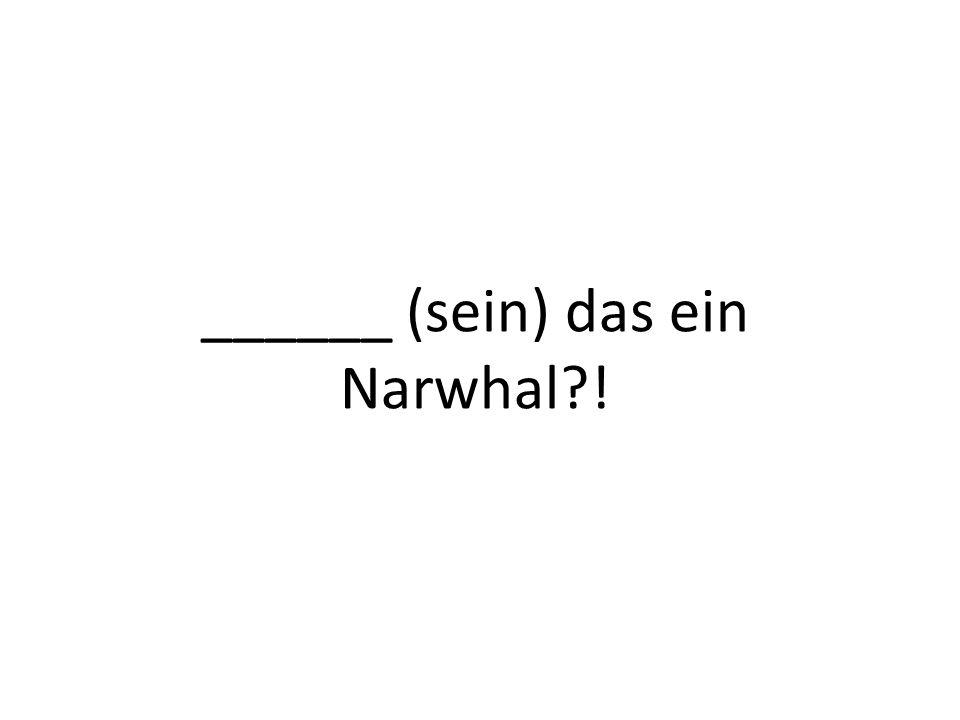 ______ (sein) das ein Narwhal !