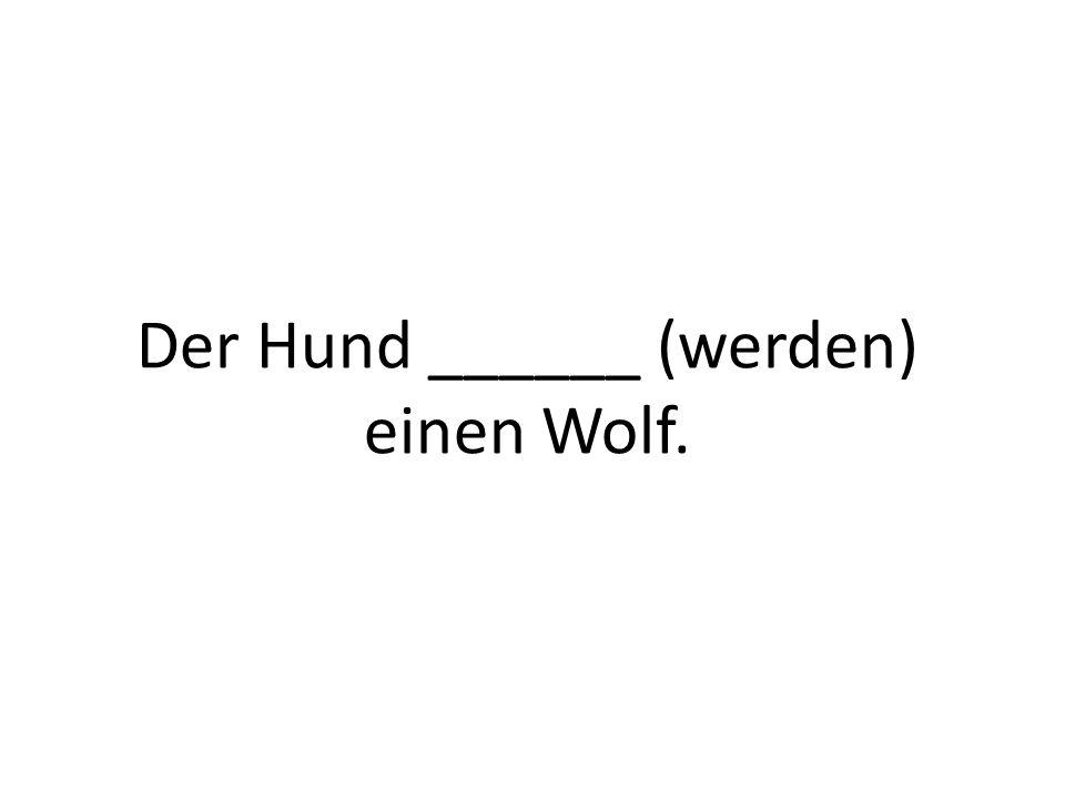 Der Hund ______ (werden) einen Wolf.