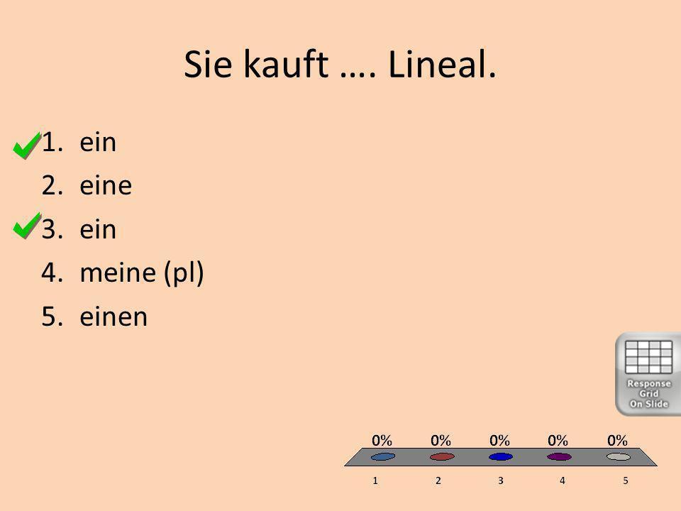 Sie kauft …. Lineal. 1.ein 2.eine 3.ein 4.meine (pl) 5.einen