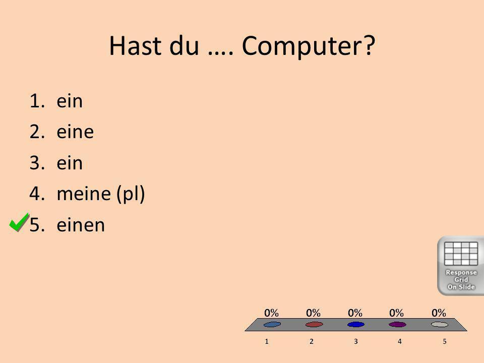 Hast du …. Computer 1.ein 2.eine 3.ein 4.meine (pl) 5.einen