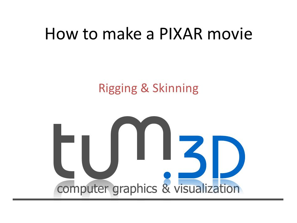 computer graphics & visualization Rigging & Skinning