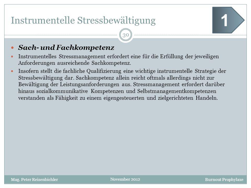 Burnout Prophylaxe November 2012 Instrumentelle Stressbewältigung Sach- und Fachkompetenz Instrumentelles Stressmanagement erfordert eine für die Erfü