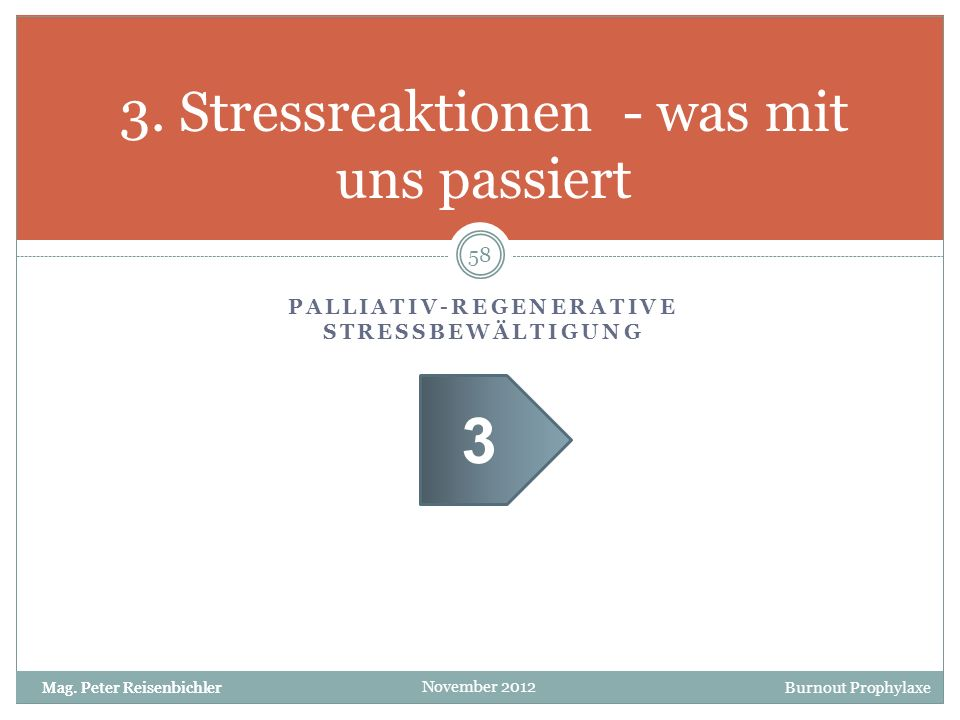 Burnout Prophylaxe November 2012 PALLIATIV-REGENERATIVE STRESSBEWÄLTIGUNG 3. Stressreaktionen - was mit uns passiert 58 Mag. Peter Reisenbichler 3