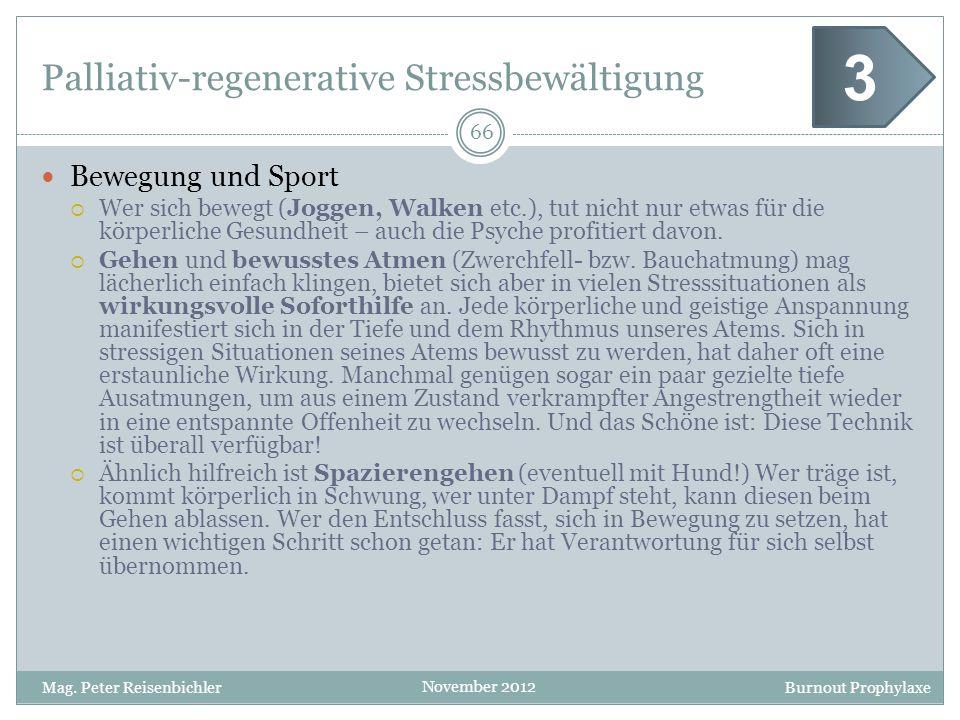 Burnout Prophylaxe November 2012 Palliativ-regenerative Stressbewältigung Bewegung und Sport Wer sich bewegt (Joggen, Walken etc.), tut nicht nur etwa