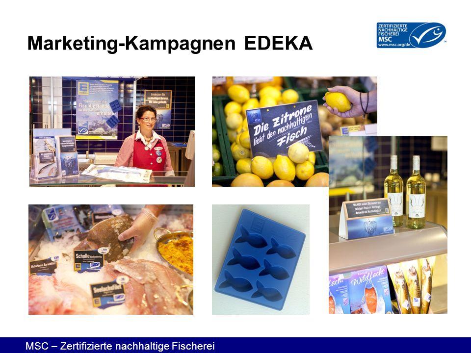 MSC – Zertifizierte nachhaltige Fischerei Marketing-Kampagnen EDEKA