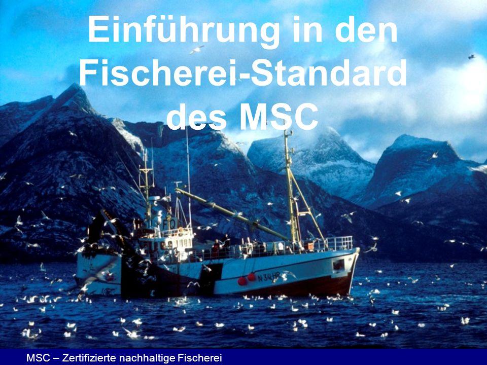 MSC – Zertifizierte nachhaltige Fischerei Einführung in den Fischerei-Standard des MSC