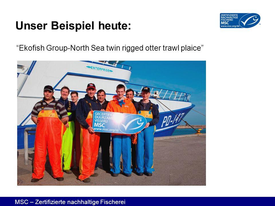 MSC – Zertifizierte nachhaltige Fischerei Unser Beispiel heute: Ekofish Group-North Sea twin rigged otter trawl plaice