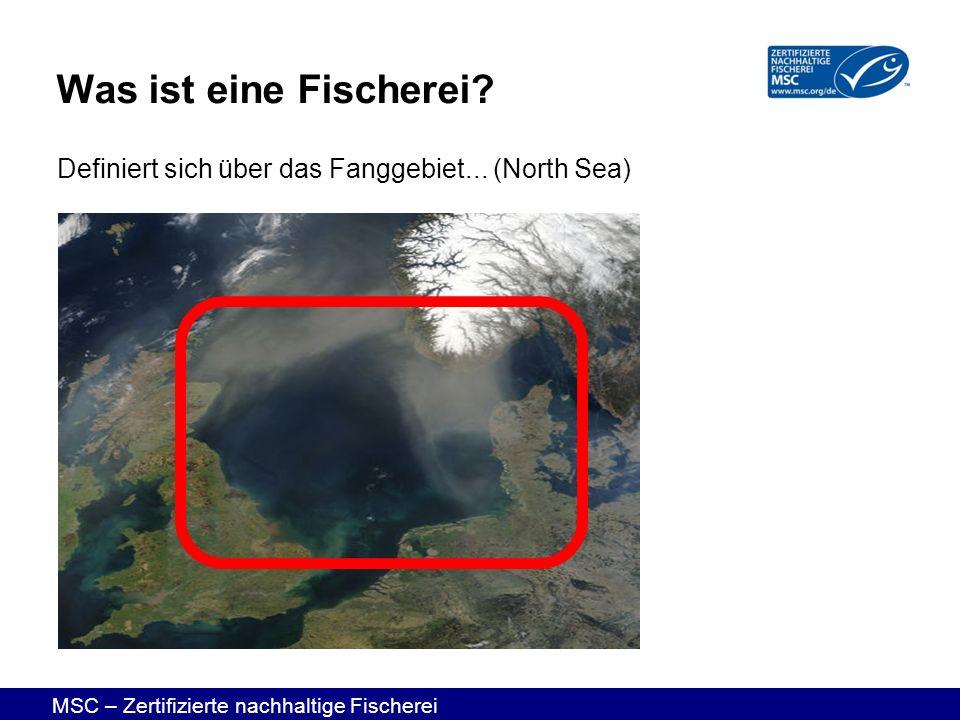 MSC – Zertifizierte nachhaltige Fischerei Definiert sich über das Fanggebiet... (North Sea) Was ist eine Fischerei?