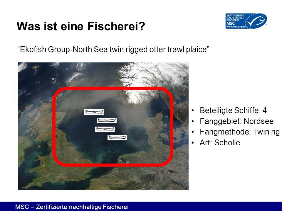 MSC – Zertifizierte nachhaltige Fischerei Beteiligte Schiffe: 4 Fanggebiet: Nordsee Fangmethode: Twin rig Art: Scholle Ekofish Group-North Sea twin ri