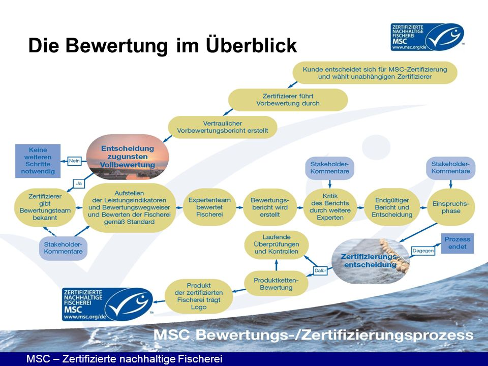 MSC – Zertifizierte nachhaltige Fischerei Die Bewertung im Überblick